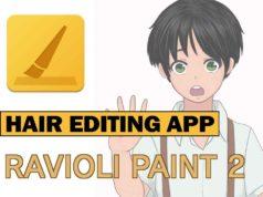 raviolipaint best app for hair editing