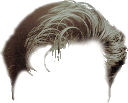 200 Hair Png Zip Hd Help